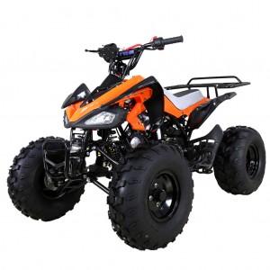 TaoTao 110cc Cheetah Sport Kids ATV orange