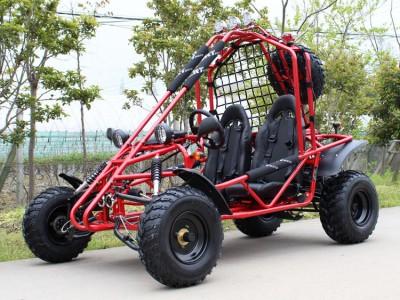 RPS 200 169cc Spider Go Kart Main image