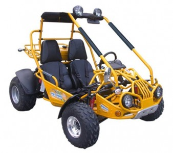 TrailMaster 150cc XRX GTS GoKart Main 2