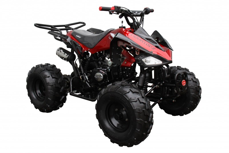coolster 125cc racerpro atv. Black Bedroom Furniture Sets. Home Design Ideas