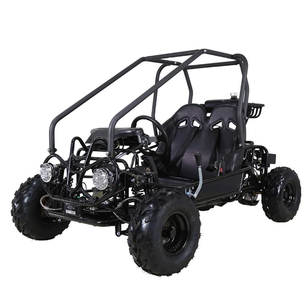 taotao 100cc kids go kart Golf Cart taotao 110cc kids go kart black