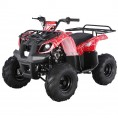 TaoTao 125 D-R Utility Kids ATV Red Spider