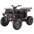 Tao Tao 150cc D-Type Bull 150 Adult ATV Black