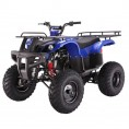 Tao Tao 150cc D-Type Bull 150 Adult ATV Blue