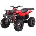 Tao Tao 150cc D-Type Bull 150 Adult ATV Red Burgundy
