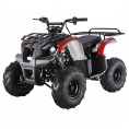 TaoTao 125 D-R Utility Kids ATV Black