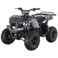 TaoTao 125 D-R Utility Kids ATV Spider Black