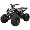 TaoTao 110cc Cheetah Sport Kids ATV Black