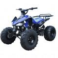TaoTao 110cc Cheetah Sport Kids ATV Blue