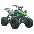 Coolster 125cc RacerPro Automatic ATV Green