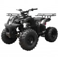 TaoTao 110 TForce Kids ATV Black