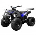 TaoTao 110 TForce Kids ATV Spider Blue