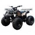 TaoTao 110 TForce Kids ATV Tree Camo