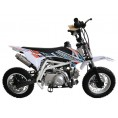 TaoTao 110 Kids Pit Bike DB 20 White