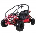 TaoTao 110cc Kids Go Kart Red Burgundy