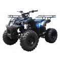 TaoTao 110 TForce Kids ATV Blue