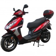 Tao Tao 50cc Evo Gas Scooter Moped Free Gift!