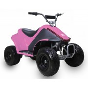 TaoTao Kids Electric ATV Rover500 Free Special Gift!