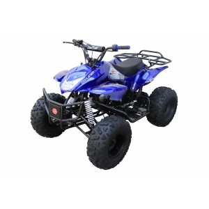 Coolster 125cc 3125A2 Fully Automatic Mid Size ATV w/ Aluminum Wheels Green