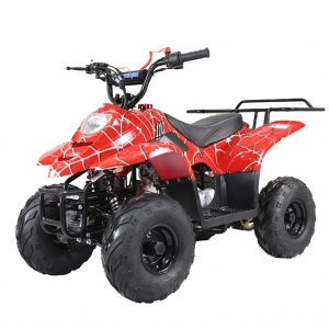 TaoTao 110cc Boulder B1 Kids ATV Red Spider