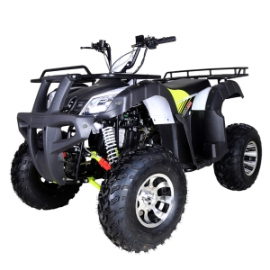 Tao Tao bull 200 Type Adult ATV