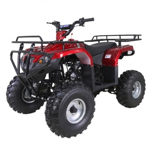TaoTao 125F1 Kids ATV