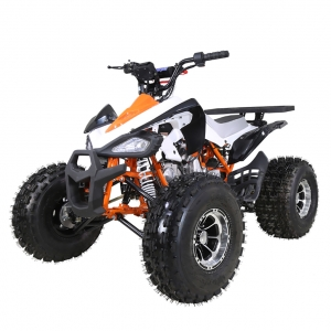 TaoTao 125 New Cheetah Sport Kids ATV