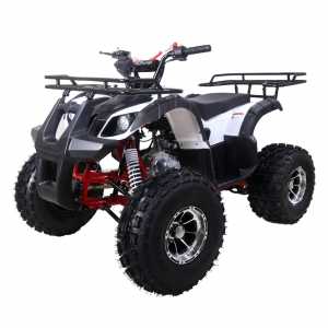 TaoTao 125 TForce Kids ATV