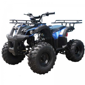 TaoTao 125 TForce Kids ATV blue