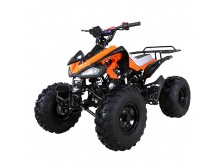 TaoTao 110cc Cheetah Sport Kids ATV