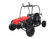TaoTao 110cc Jeep Max GoKart Fully-Automatic with Reverse