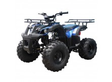 TaoTao 110 TForce Kids ATV Free Gift!