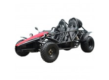Tao Tao Arrow 150cc Go Kart Free Shipping!!