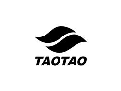 Tao Tao Go Kart